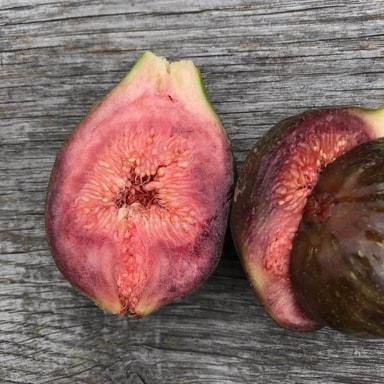 Fint rødt til pink frugtkød i bornholmerfigen